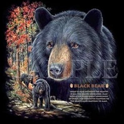 Black Bear Night Shirt