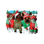 Dog & Cat Noel Nightshirt