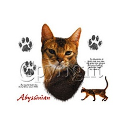 Abyssinian Cat Custom Nightshirt