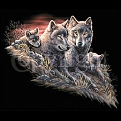 Wolf Family Custom Nightshirt