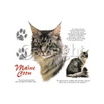 Maine Coon Cat Custom Nightshirt