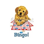 Bingo Puppy Custom Nightshirt
