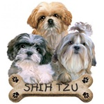 Shih Tzu Puppies Nightshirt