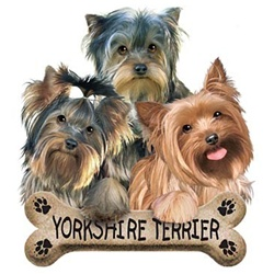 Yorkie Puppies Custom Nightshirt