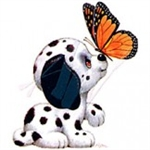 Dalmatian with Butterfly Nightshirt
