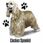 Cocker Spaniel Custom Nightshirt