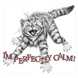 Perfectly Calm Cat Custom Nightshirt