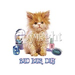 Bad Hair Day Kitten Custom Night Shirt
