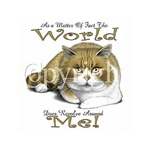 World Revolves Around Me Cat Custom Night Shirt