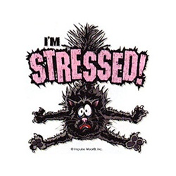 I'm Stressed! Cat Custom Night Shirt