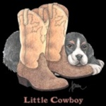 Little Cowboy Custom Nightshirt