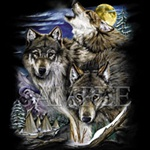Wolves & Village Custom Nightshirt
