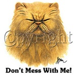 Don't Mess With Me Cat Custom Nightshirt,