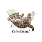 Do Not Disturb! Kitten Custom Night Shirt